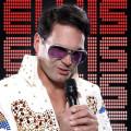 Elvis Presley Double Vinzent